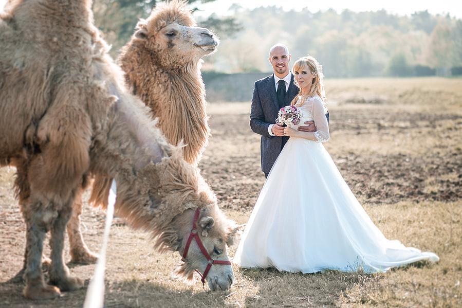Hochzeit in Lingen